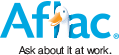 Aflac Insurance Agent TN